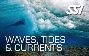 472547_Waves, Tides & Currents (Small)